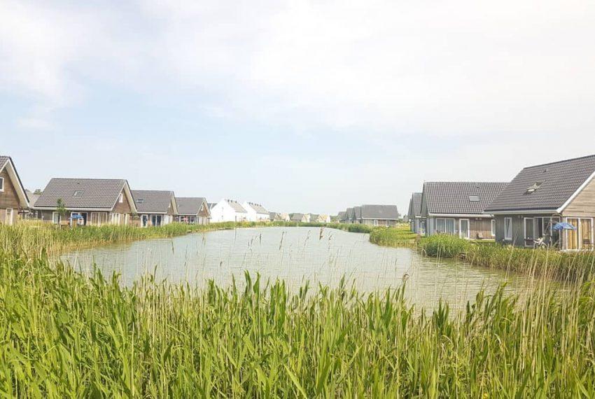 Vijver Nieuwvliet-bad